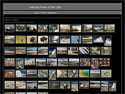 Contact sheet with 547 thumbnails